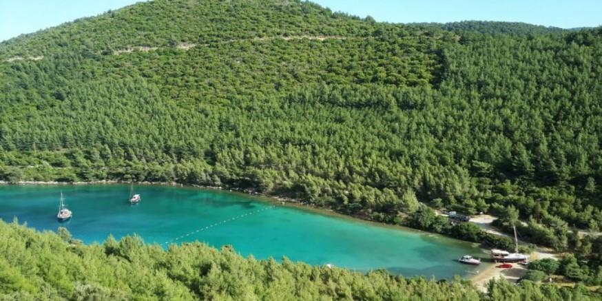 AKP, çevre katliamına yol açan jeotermal enerji santralları (JES) için Muğla'da 32 sahayı ilana çıkardı
