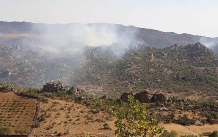 Diyarbakır'ın Dicle ilçesinde operasyonun ardından orman yangını