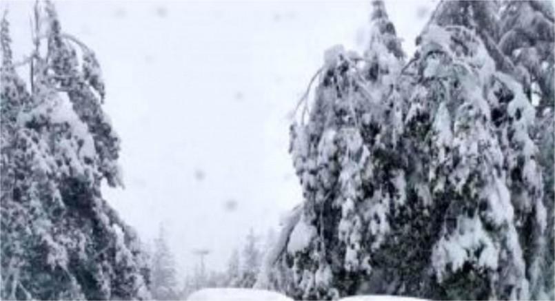 Kar kalınlığı Avusturya İsviçre sınırında 25 santimetreye ulaştı